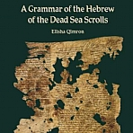 A Grammar of the Hebrew of the Dead Sea Scrolls